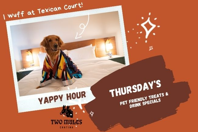 Pet Happy Hour Event at Texican Court Hotel