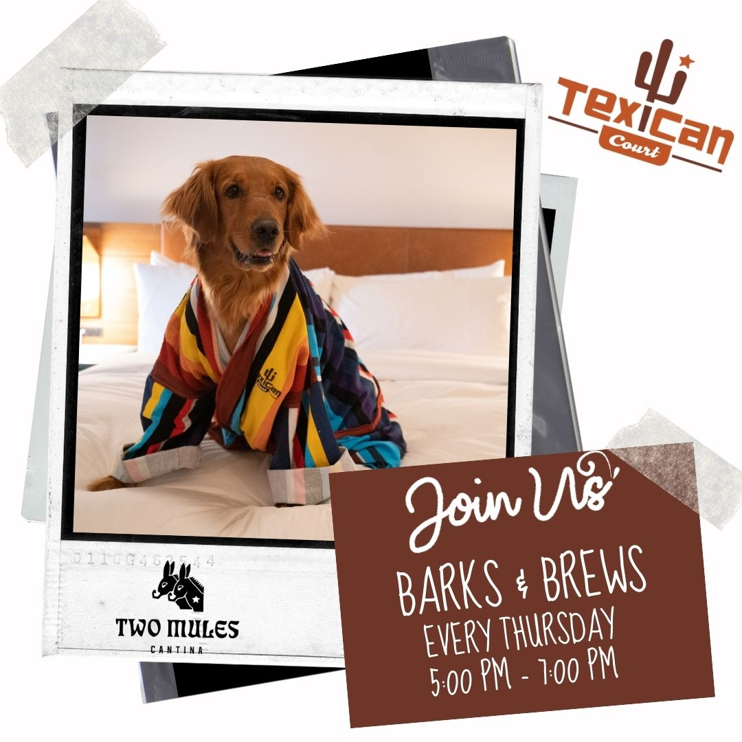 Barks & Brews Pet Event